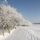Snow on the river bank by TesniJade