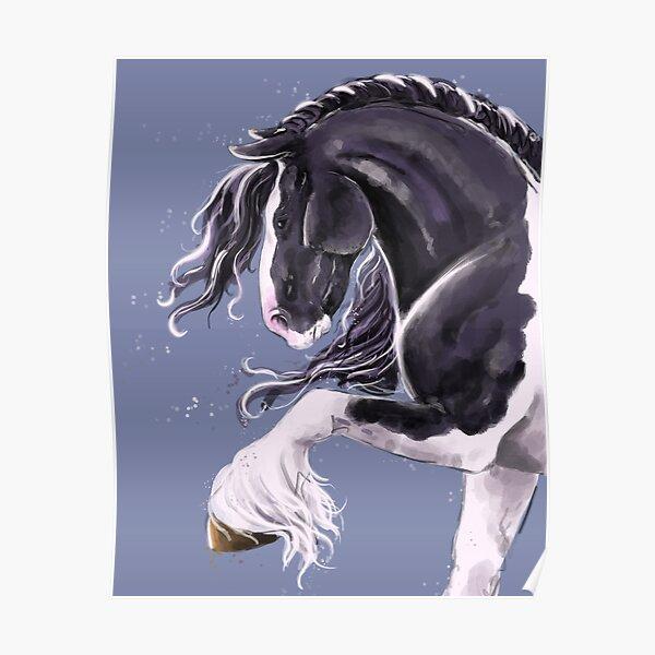 Gypsy cob horse  Poster
