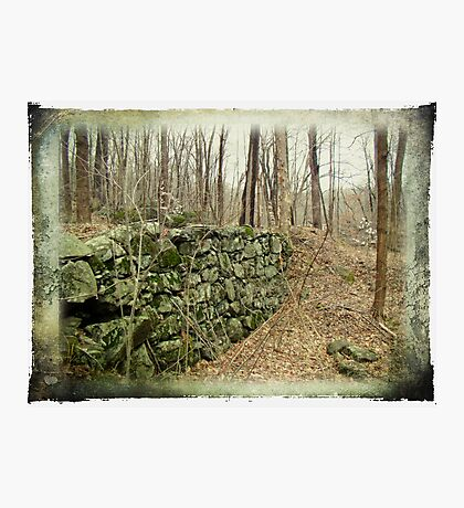 All That Remains of the Farm Photographic Print