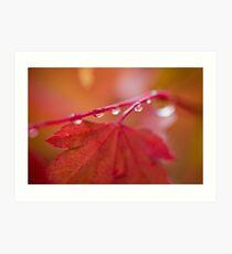 Autumn Leave III Art Print