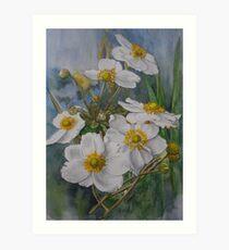 Anemones in Autumn Art Print