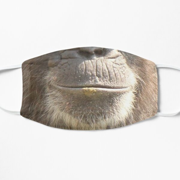 chimp mask  Flat Mask