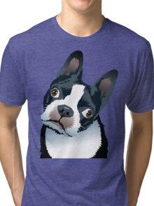 quizzical Bailey Tri-blend T-Shirt