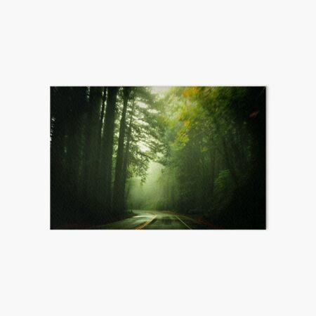 Driving Through Fog Art Board Print