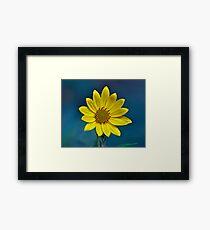 Sundrops Framed Print