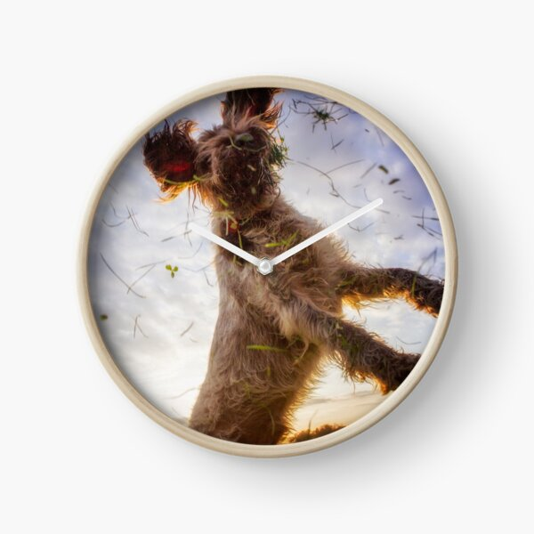 Leaping for clover Spinone Clock