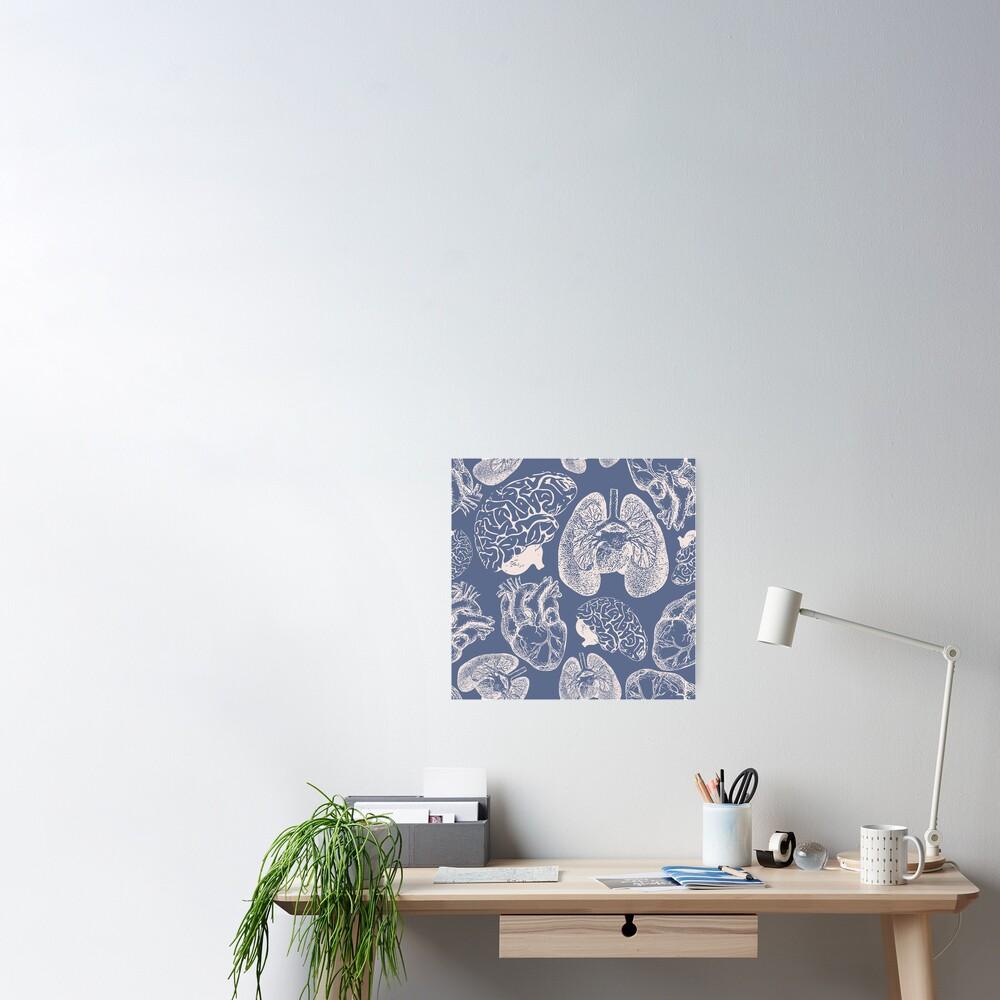 Anatomical Organs - White on Blue Poster