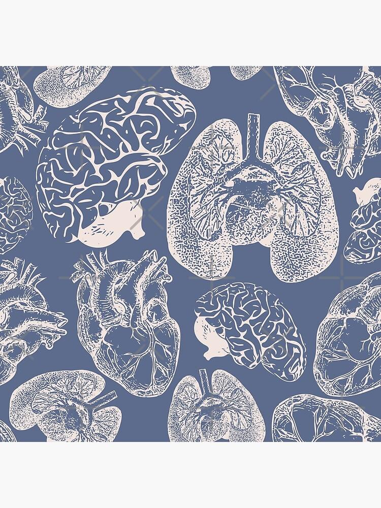 Anatomical Organs - White on Blue by beththompsonart
