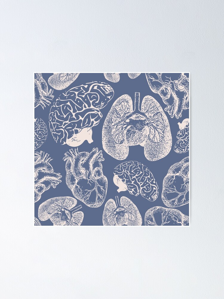 Alternate view of Anatomical Organs - White on Blue Poster