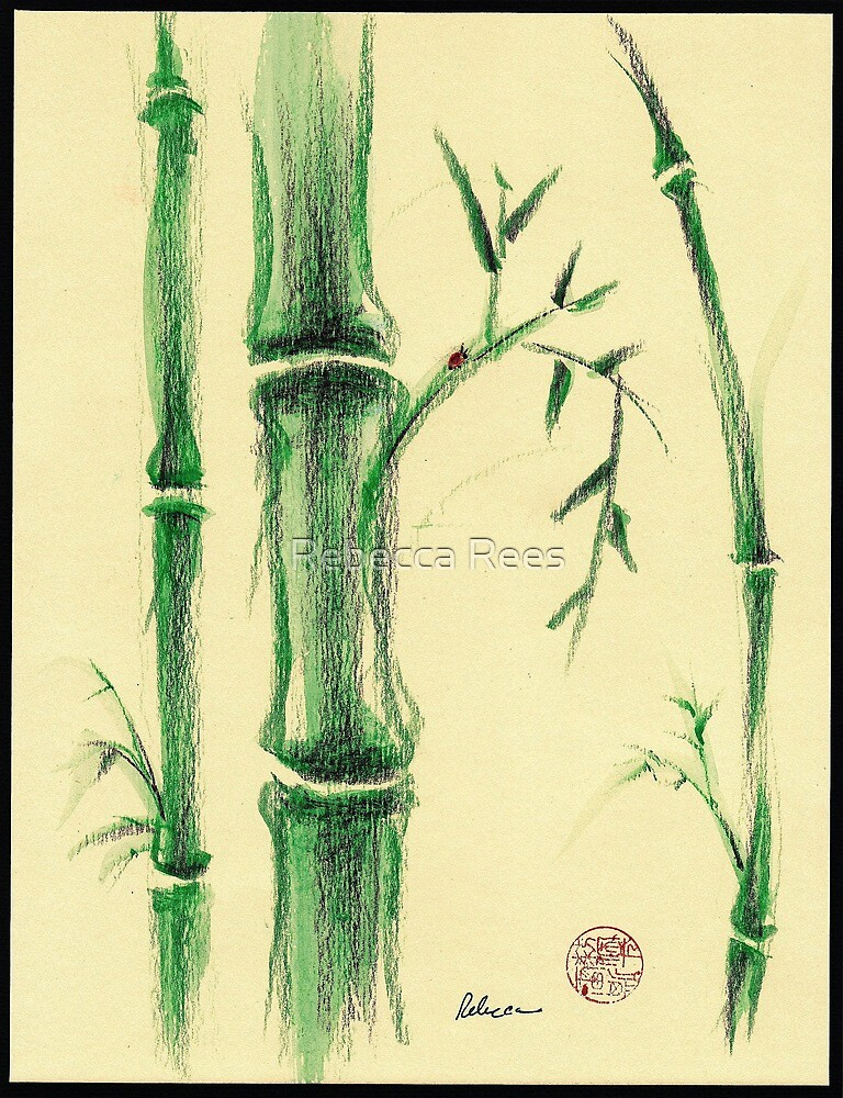 Happiness - Zen bamboo prisma pencil and watercolor drawing by Rebecca Rees