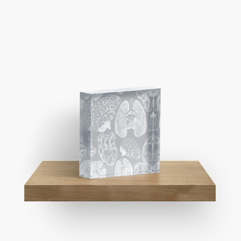 Anatomical Organs - White on Grey Acrylic Block