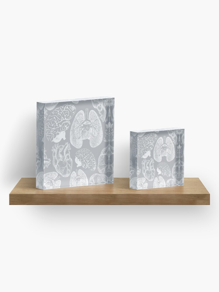 Alternate view of Anatomical Organs - White on Grey Acrylic Block