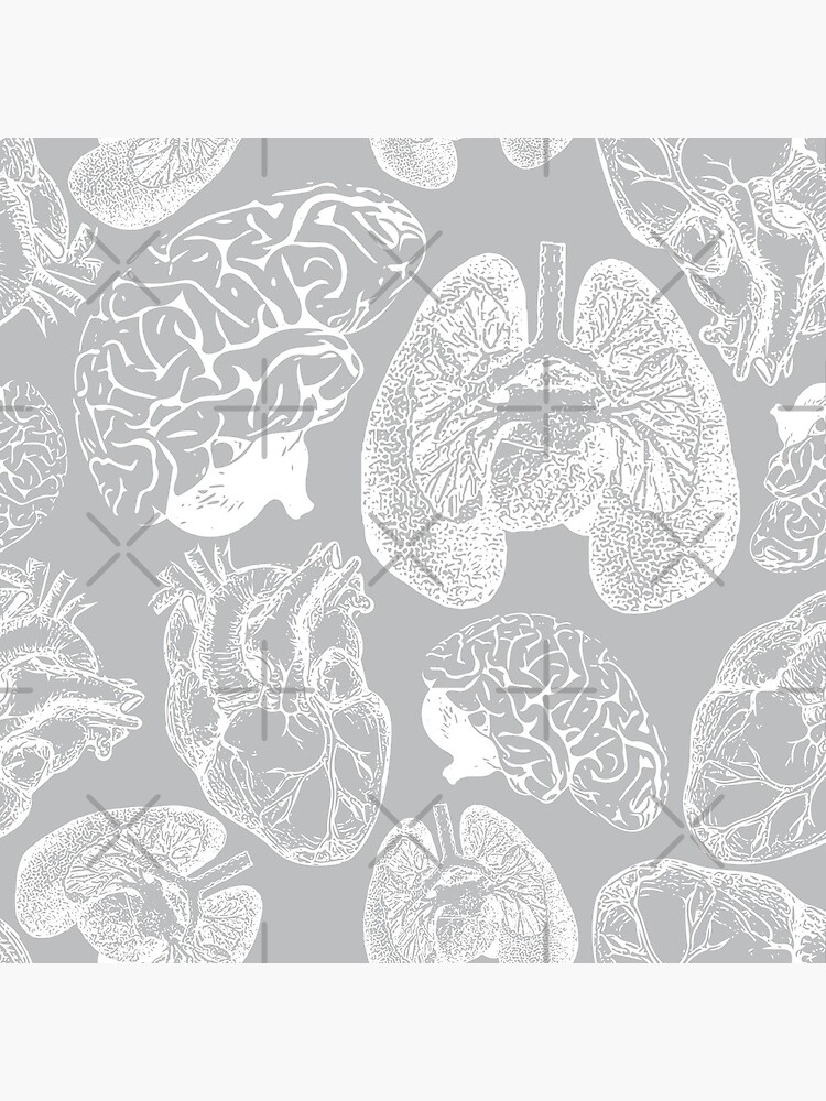Anatomical Organs - White on Grey by beththompsonart