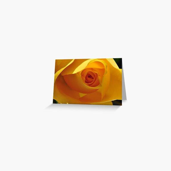 The Yellow Bud Greeting Card