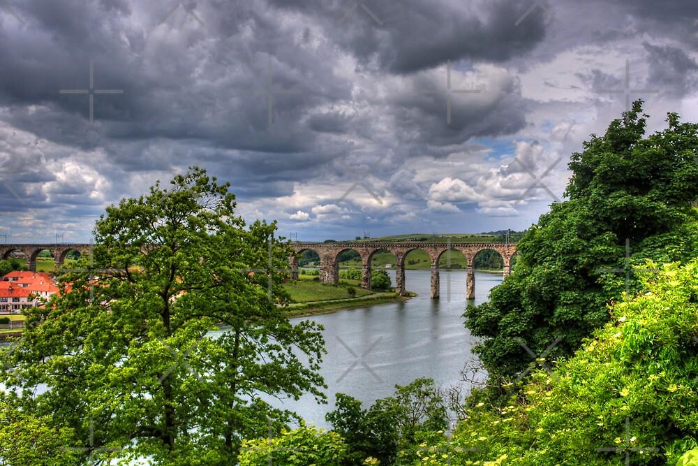 Royal Border Bridge III by Tom Gomez