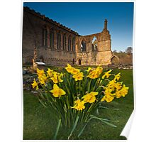 Bolton Abbey, Yorkshire Dales, Yorkshire Dales Poster