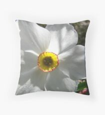 Springtime Macros V Throw Pillow