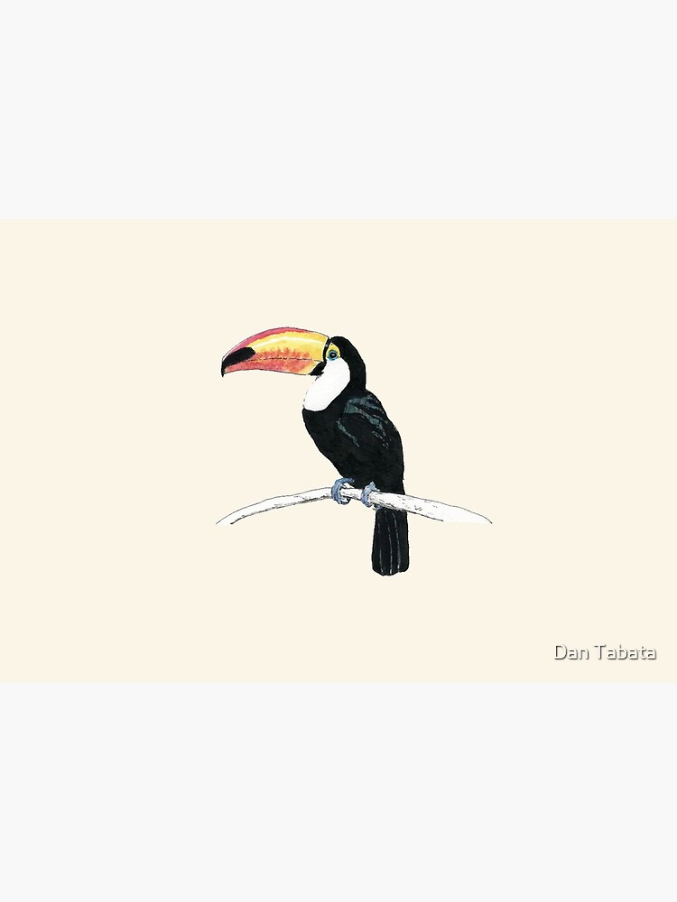 Toucan by dmtab
