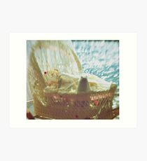 Bassinet with toys - vintage look Art Print