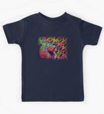 Colorful Lion Kids Clothes