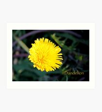 Dandelion Paintography Art Print