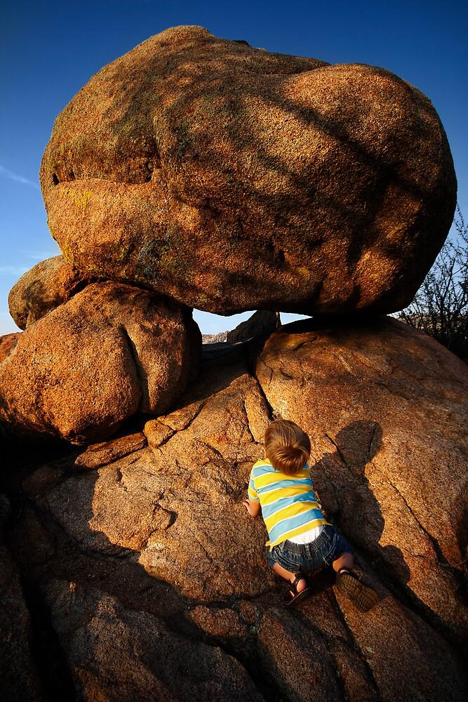 Rock Toddler by Bob Larson
