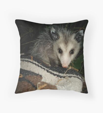 BABY OPOSSUM Throw Pillow