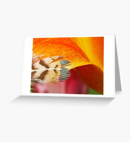 Touchy-Feely Greeting Card