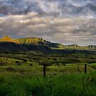 Scenic Rim Mountains by Kym Howard