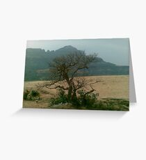 Malshej Ghat Greeting Card