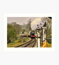 Buckfastleigh steam train Art Print