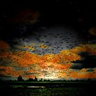 The Early Flight by Charles & Patricia   Harkins ~ Picture Oregon