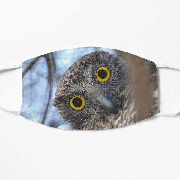 Curious Australian Powerful Owl Mask