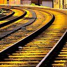 Tracks by ifreedman