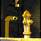 Hydrant by ifreedman