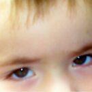 Through the eyes of a child... by Irene  van Vuuren