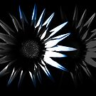 Abstract Flower, Blue 2/5 by Mark Battista