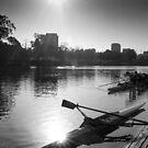 Yarra Rowers by John Violet