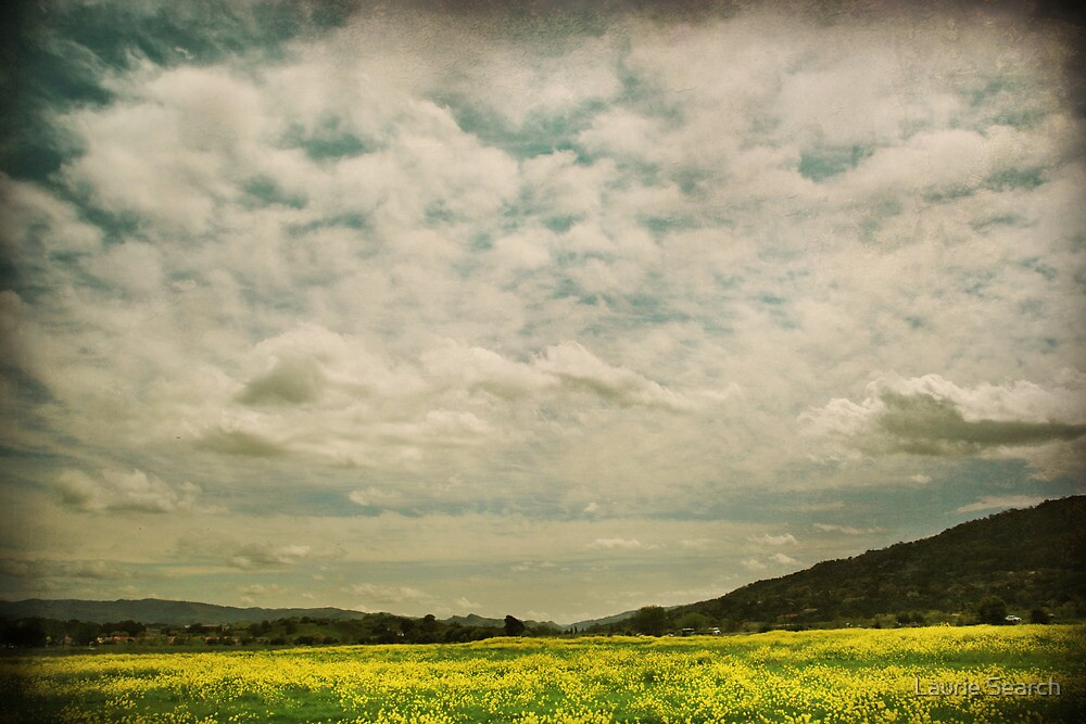 I Stopped and Watched the Clouds  by Laurie Search