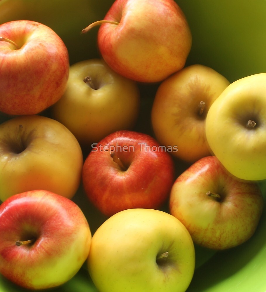 Ten Apples (still life) by Stephen Thomas