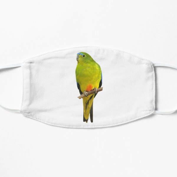 Orange-bellied Parrot Mask