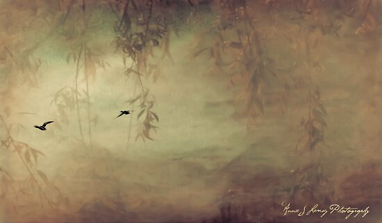 Into the Mystic by Annie Lemay  Photography