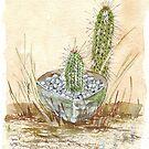Kaktus Trichocereus von Maree Clarkson