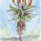 Aloe Ferox Malerei 2 von Maree Clarkson