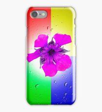 Quadrant Colours  iPhone Case/Skin