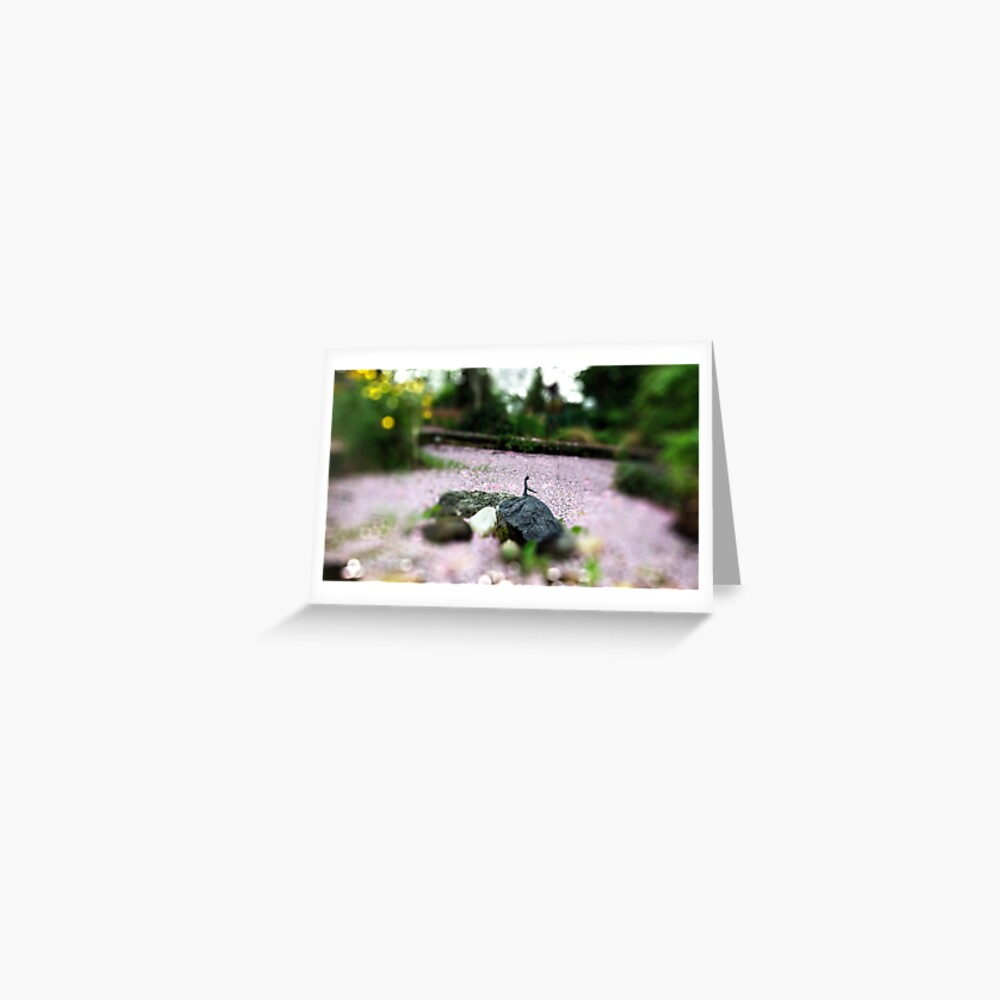 Cherry Blossom Composition Greeting Card