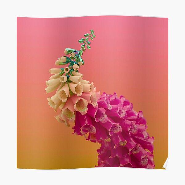 Flume Skin flower fire Poster