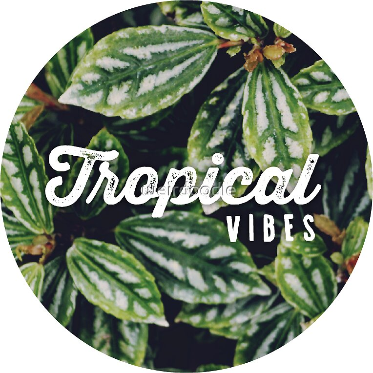 Tropical vibes by weirdoodle