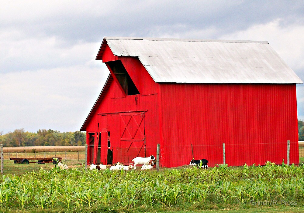 Billy Goat Farm by Grinch/R. Pross
