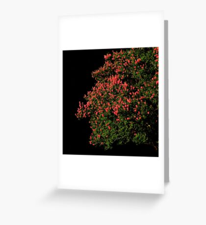 The Art Of Trees ~ Part Two Greeting Card